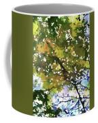 Fall In Woods Coffee Mug