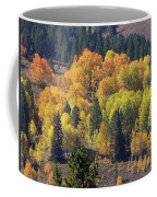 Fall Lands In Western Wyoming Coffee Mug