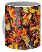Fall Leaves On Forest Floor Coffee Mug