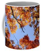 Fall Oak Leaves Up Above Coffee Mug
