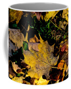 Fall On The Ground Coffee Mug