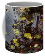 Fall Pond Reflections - A Story Of Waterlilies And Japanese Maple Trees - Take One Coffee Mug
