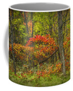 Fall Sumac Trees With Red Leaves In A Michigan Forest During Autumn Coffee Mug