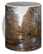 Fall Swamp Coffee Mug