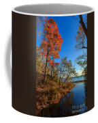 Fall Trails Coffee Mug