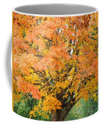 Fall Tree Art Print Autumn Leaves Coffee Mug