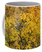 Fall Tree Leaves 2 Coffee Mug