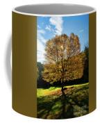 Fall Tree Silhouette Kent Falls State Park Connecticut Coffee Mug