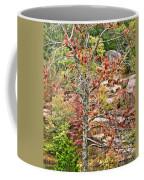 Fall Tree With Intense Colors Coffee Mug