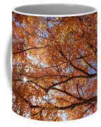 Fall Tree With Star Burst Coffee Mug