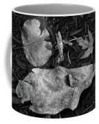 Fallen Leaves Revisited Coffee Mug