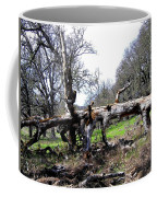 Fallen Mighty Oak Coffee Mug