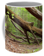 Fallen Trees Coffee Mug