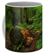 Fallen Trunk Coffee Mug