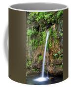 Falling Spring Coffee Mug