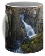 Falling Waters In February #2 Coffee Mug