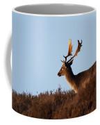 Fallow Buck Coffee Mug