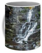 Falls Creek Gorge Trail Ithaca New York Coffee Mug