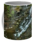 Falls Creek Gorge Trail Coffee Mug
