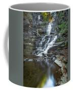Falls Creek Gorge Trail Reflection Coffee Mug