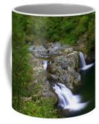 Falls Falls Coffee Mug