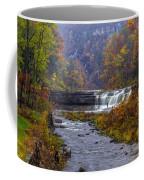 Falls Fishing Coffee Mug by Mark Papke