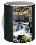 Falls In Fall Coffee Mug