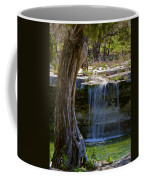 Falls Into Cow Creek Coffee Mug