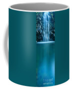 Falls Pool Coffee Mug