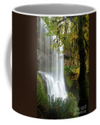Falls Though The Trees Coffee Mug