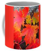 Falltime ...  Coffee Mug