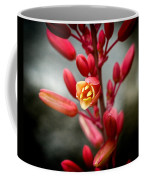 False Agave Of Southwestern Texas Coffee Mug