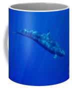 False Killer Whale Coffee Mug
