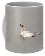 Family Swim Coffee Mug