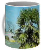Fan Palm Tree Coffee Mug