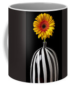 Fancy Daisy In Stripped Vase  Coffee Mug