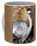 Fancy Feathers Coffee Mug