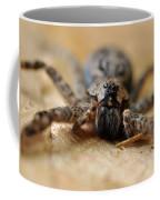 Spider Close Up Coffee Mug
