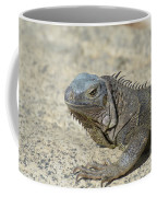 Fantastic Gray Iguana With Spines Along His Back Coffee Mug