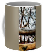 Fat Sparrow Fat Fence Coffee Mug