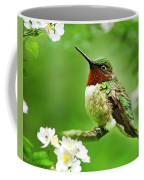 Fauna And Flora - Hummingbird With Flowers Coffee Mug by Christina Rollo