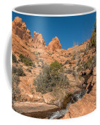 Faux Falls Trail Coffee Mug