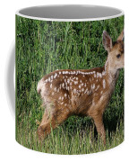 Fawn In The Open Coffee Mug