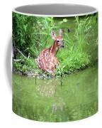 Fawn White Tailed Deer Wildlife Coffee Mug