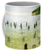 Fayette State Park Shoreline Coffee Mug