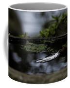Floating On A Still Pond Coffee Mug