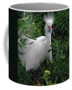 Feather 8-9 Coffee Mug