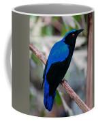 Feathered Fairy Coffee Mug