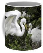 Feathering Their Nest Coffee Mug