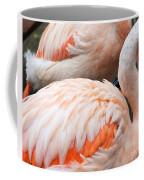 Feathers Of Flamingo Coffee Mug